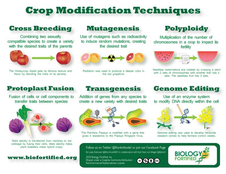 Crop Modifications Techniques En