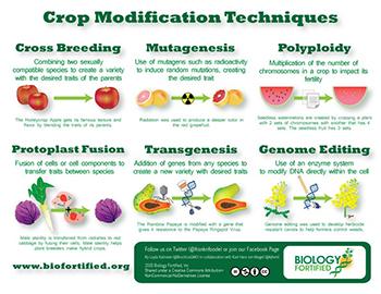Crop Modifications Techniques (EN)