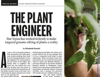The Plant Engineer (EN)
