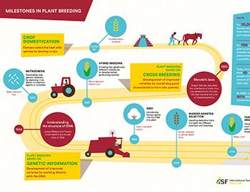 Milestones in plant breeding (EN)