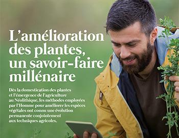 L'amélioration des plantes, un savoir millénaire (FR)
