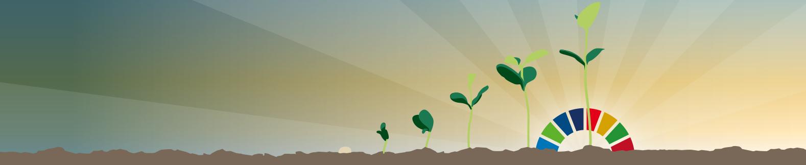 Seed Sector Declaration illustration PNG